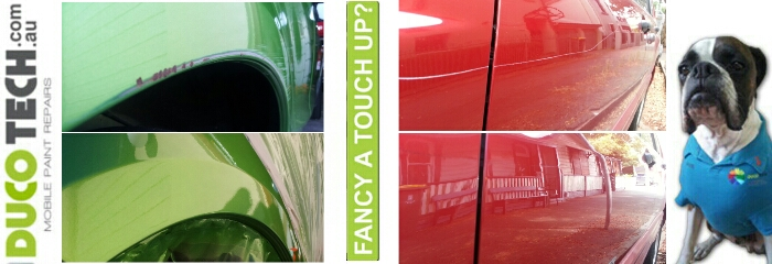 NEWCASTLE MOBILE SCRATCH REPAIRS